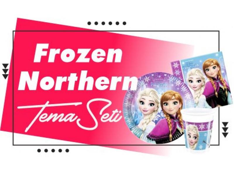 frozen-northern-lights-parti-seti